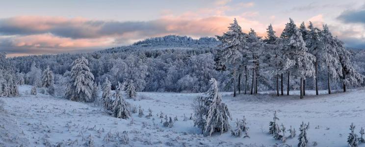 冬天,心情,大自然