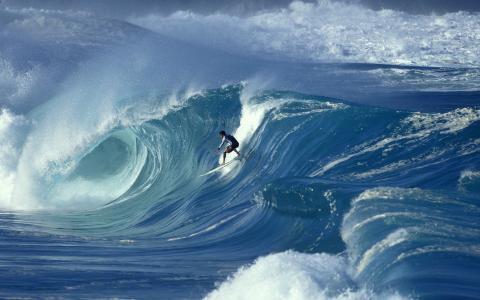 冲浪,董事会,波浪,海洋,人