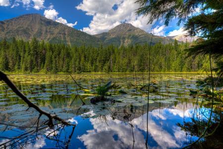 冰川国家公园,蒙大拿州,美国,天空,山,树,云,森林,湖泊