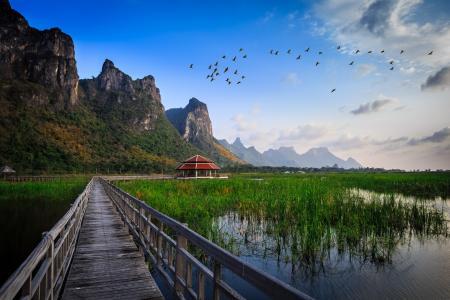 国家公园,泰国,桥,水,湖,草,小屋,建设,山,鸟类