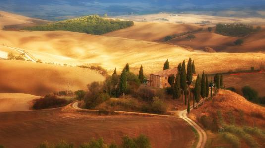 托斯卡纳,田野,房子,树木,意大利