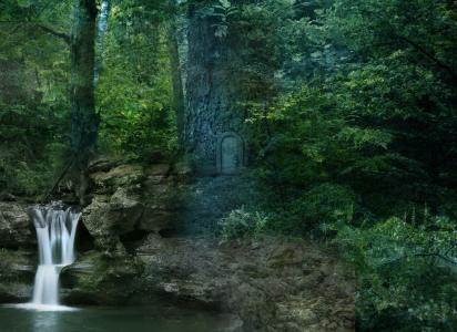 森林,树木,瀑布,景观