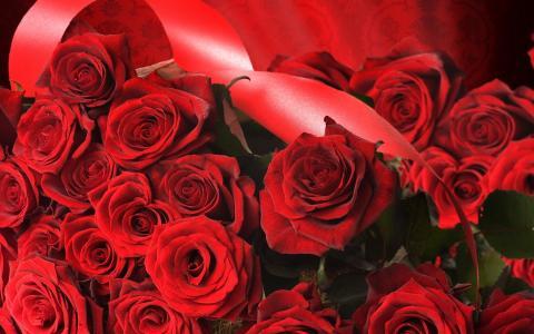 玫瑰,丝带,帆布