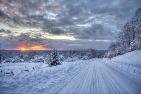 日落,冬季,树木,路,景观