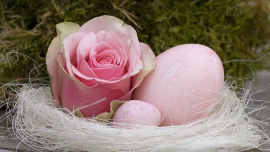 鸡蛋,巢,玫瑰,按钮