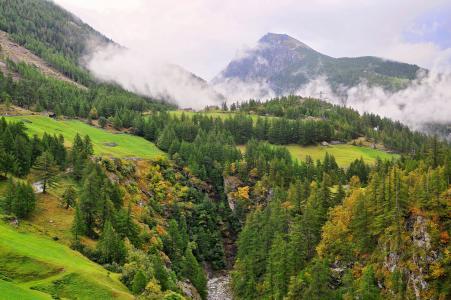 山,丘陵,河流,树木,从顶部看,景观,瑞士