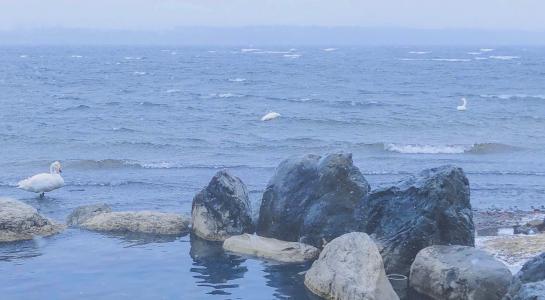 优美迷人海景