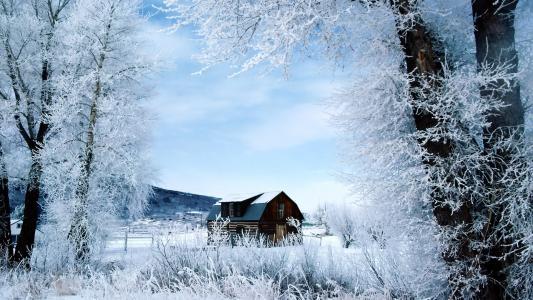 冬天,一天,壁纸