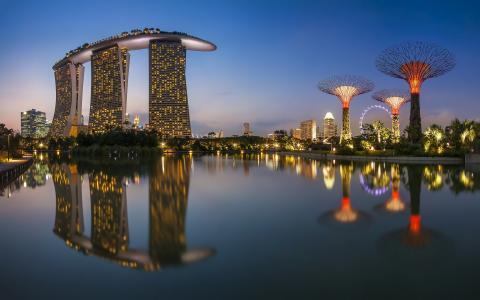新加坡,城市,建筑物,夜,海,反射,灯光,摩天轮
