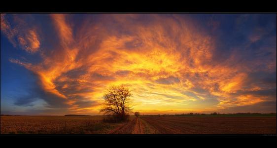 自然,日落,心情