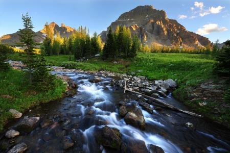 河流,山脉,树木,石头,景观