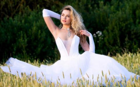Vestido de novia,新娘,性感,婚纱,闪亮的领带,美丽