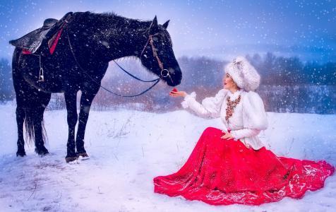 女孩,衣服,马,马,冬天,雪