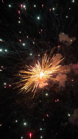 夜空中绚丽多彩的烟花