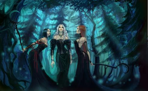 女巫,树林