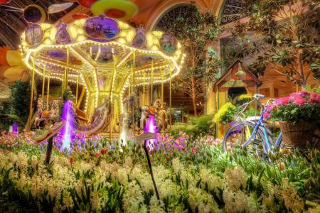 拉斯维加斯,拉斯维加斯,酒店,酒店,旋转木马,鲜花,风信子,郁金香,自行车
