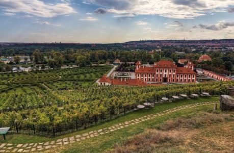 布拉格,捷克共和国,布拉格,植物园,植物园,景观