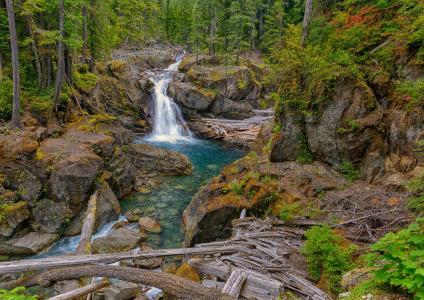银瀑布,Packwood,华盛顿,瀑布,河流,岩石,森林